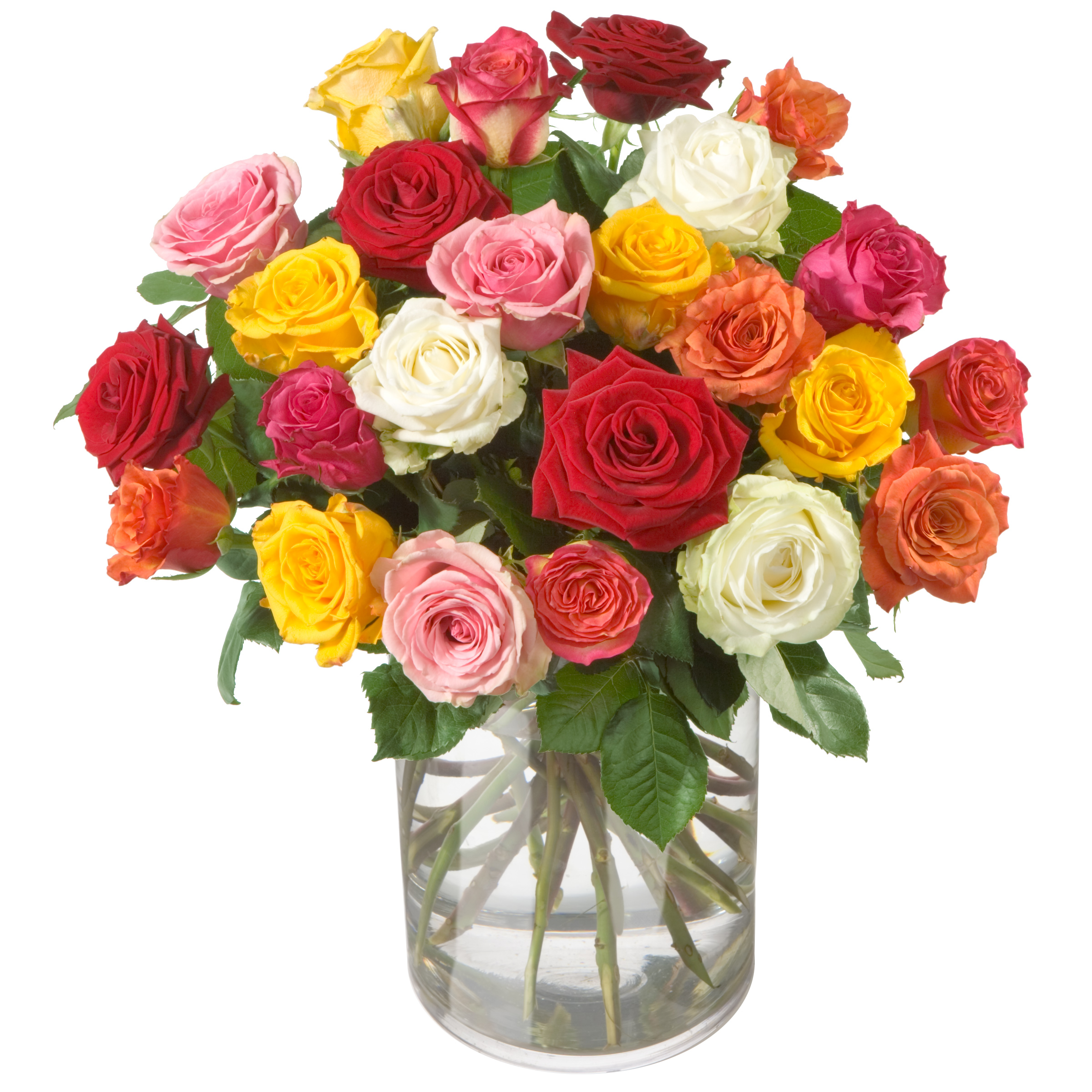 """Bouquet of roses """"Allure"""" (without vase)"""