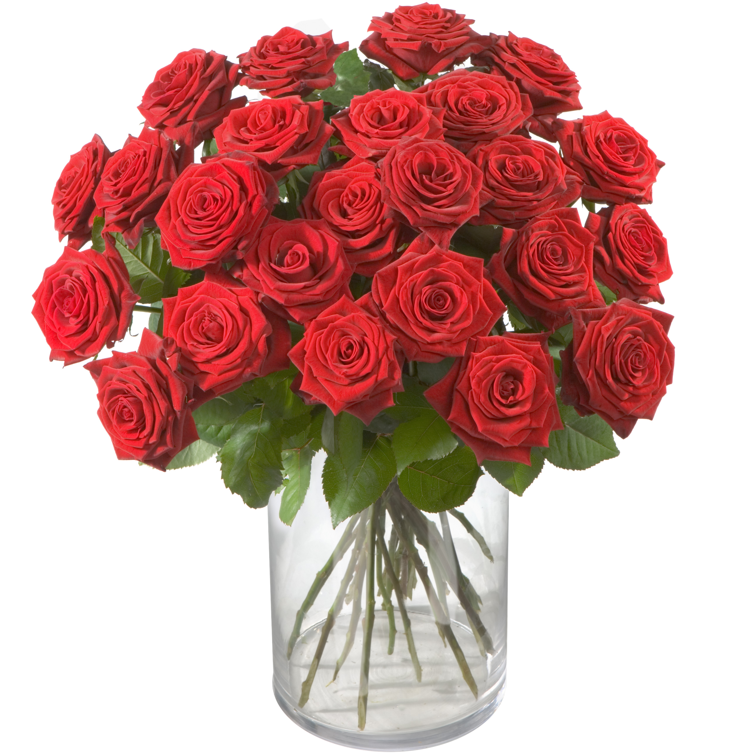 """Bouquet of Red Roses """"Classics"""""""