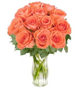 "Bunch of Orange Roses ""Bliss"" (without vase)"